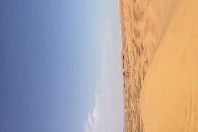 Morning Desert Safari with ATV bike