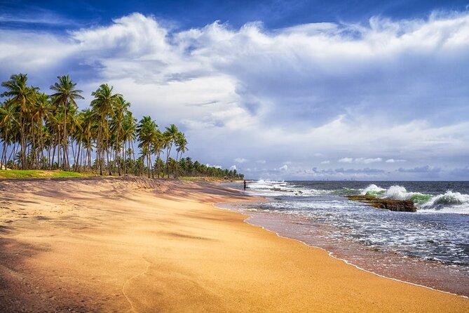 Tour around Negombo/Dambulla/ Sigiriya/ Kandy/ Nuwara Eliya (4 nights / 5 Days)