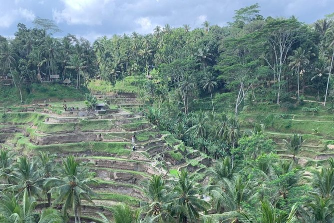 Best of Ubud & Mount Batur Volcano Private Bali Tour