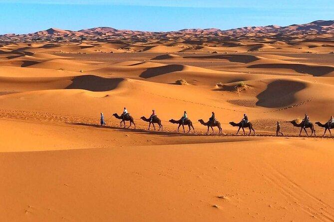 Morocco Camel treks experiences 2 nghits in Erg Chabbi desert