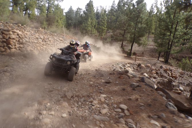 Half-Day Quad Tour in Teide National Park