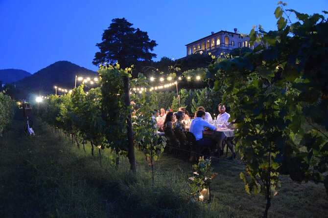 Dinner in the Villa dei Vescovi vineyard