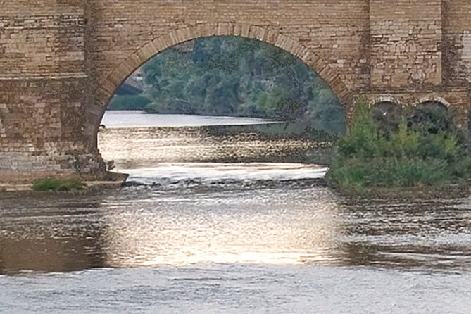 Guided Visit to Goya Mudéjar Bridges of the Ebro in Zaragoza