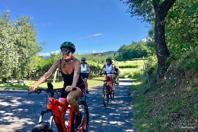 Bike tour Between the Vineyards and Wine Tasting in Lazise