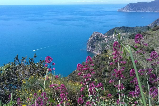 Cinque Terre unforgettable hiking experience