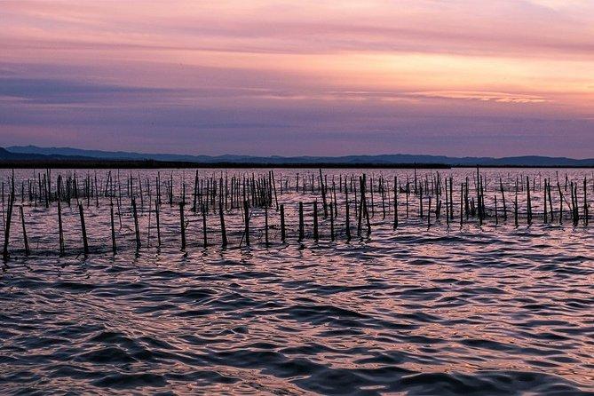 Albufera: Lake, Paella and Birdwatching