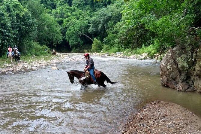 Experience Horse Riding, ATV & Zipline