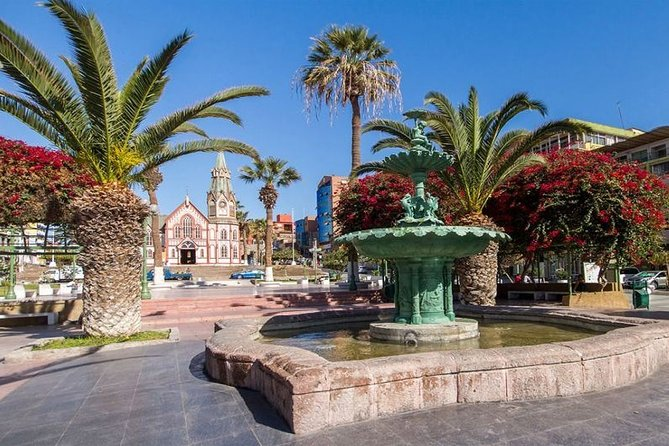 Arica Private Sightseeing Tour