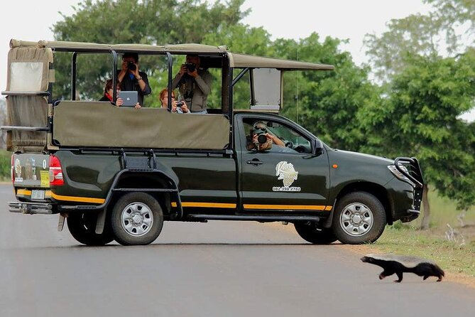 Private Vehicle Afternoon Safaris in the Kruger National Park