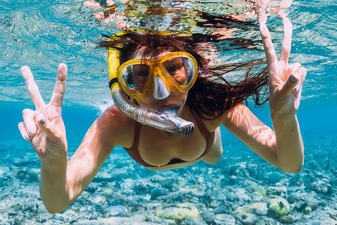 Antigua: History, Local Food and Snorkeling whole island tour.