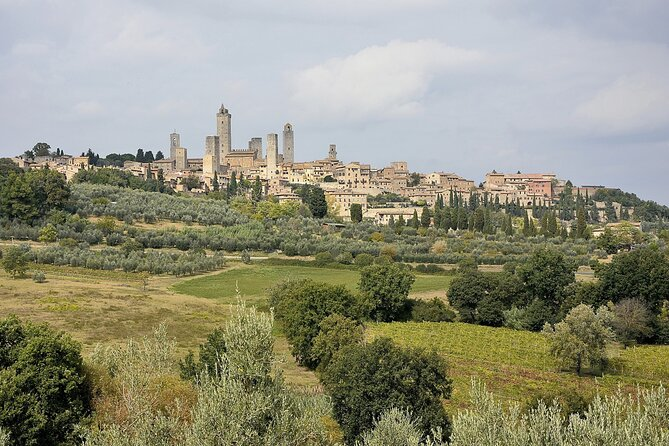 Semi-Private Tuscany Tour: San Gimignano-Siena-Chianti from Florence