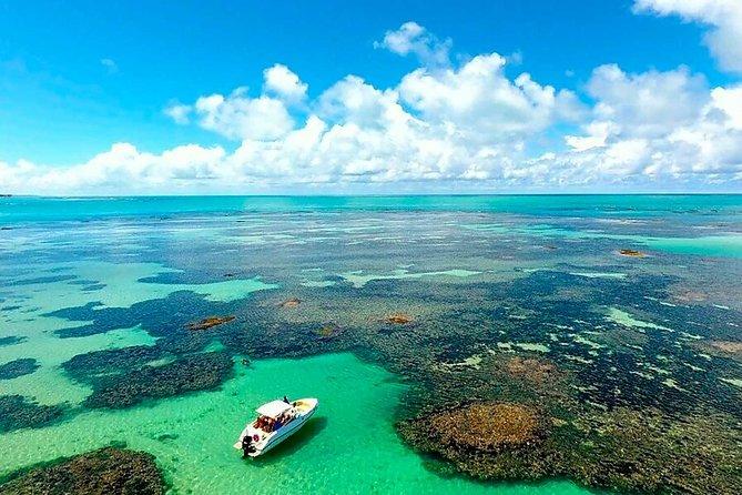 Visita de dia inteiro para a Praia de Paripueira e piscinas naturais de Maceió