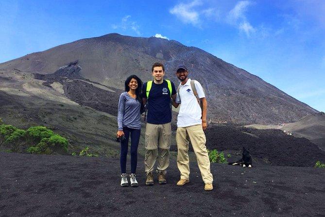 Puerto Quetzal Shore Excursion - Private Tour: Pacaya Hike Experience