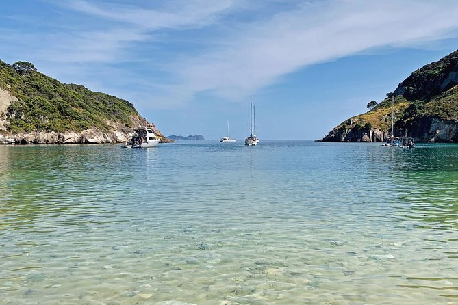 Exclusive sailing charter from Waiheke Island