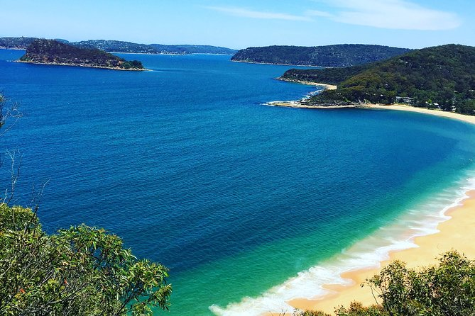 Central Coast Private Tour From Sydney, plus included Australian Reptile Park