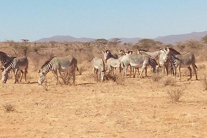 7 Days Safari, Samburu N/R Ol Pejeta Conservancy, Hells Gate N/P Maasai Mara N/R