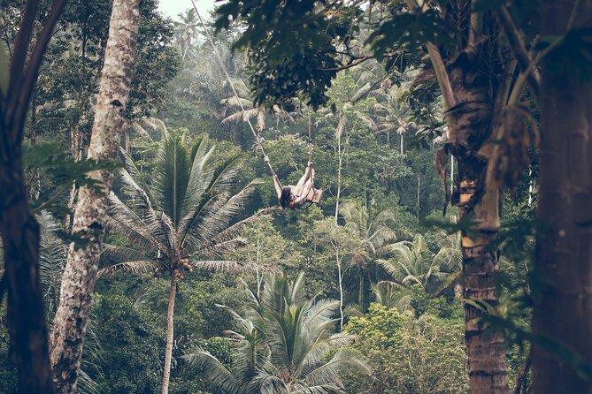 Mount Batur Sunrise Hiking and Coffee Plantation Bali Tour