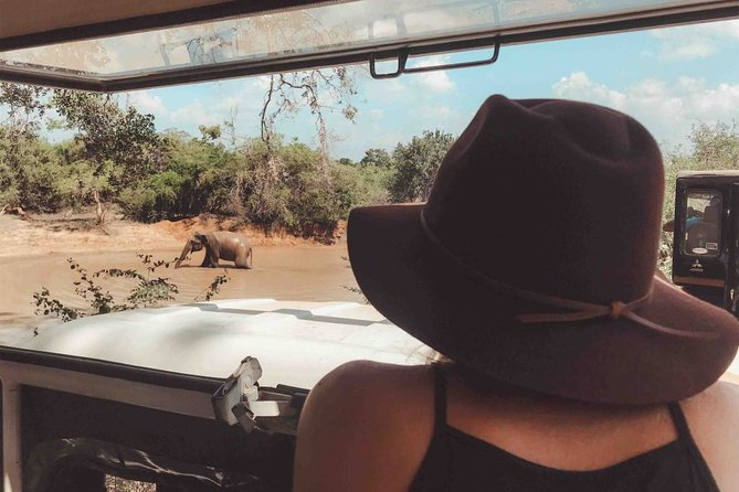 Wildlife Safari in Yala National Park - Afternoon Game Drive