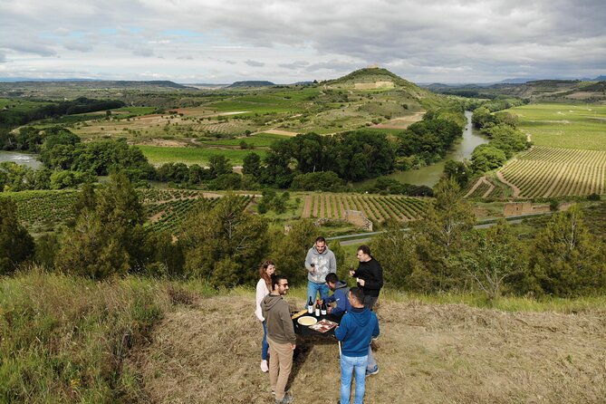 Private Vineyards Tour in San Vicente de la Sonsierra