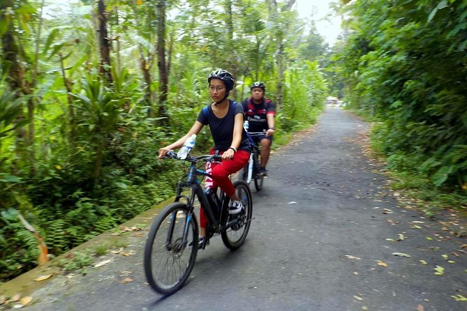Private Cycling Tour of Jatiluwih and Surroundings with Guide