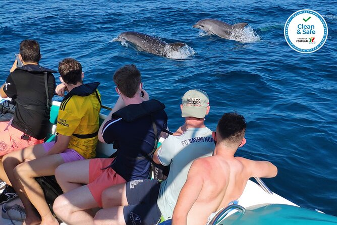 Private Boat Tour, Coast, Caves & Dolphins - Up to 12