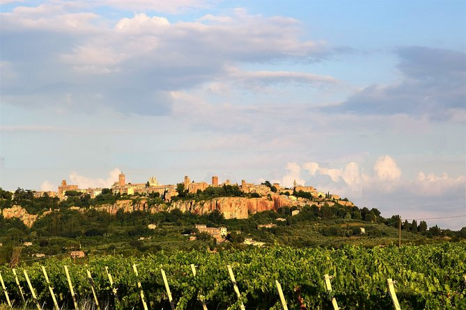 Visit Orvieto from Rome + Lunch & Wine Tasting - Day Tour