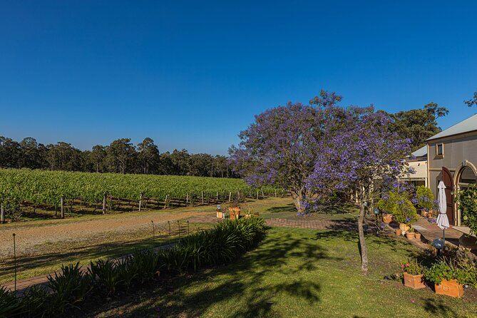 The view at Tintilla Estate