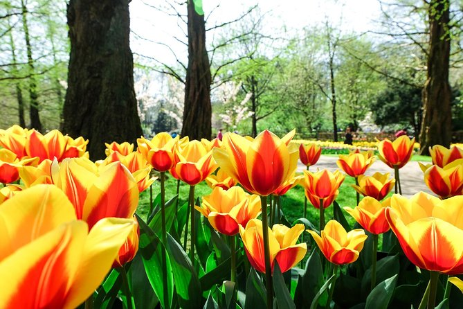 Most Beautiful Gardens in Europe