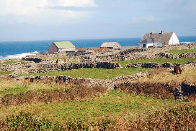 Aran Islands Tours from Dublin