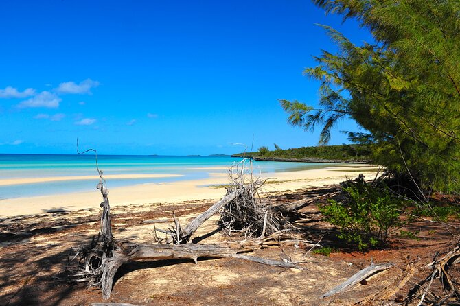 Top Beaches in the Bahamas