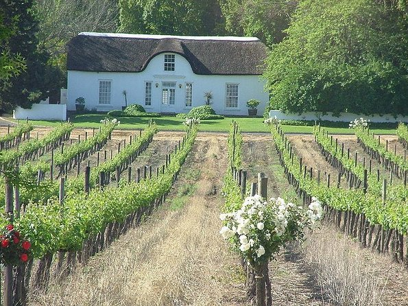 Cape Winelands Tours from Cape Town