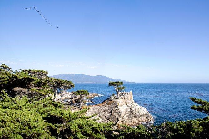 California Coast Tours From San Francisco