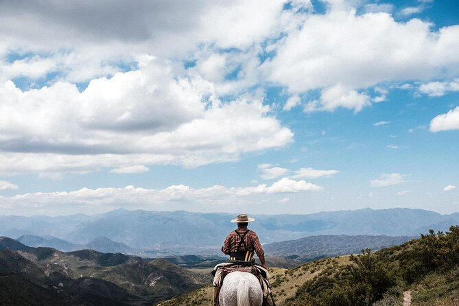 Andes Mountains Tours from Mendoza