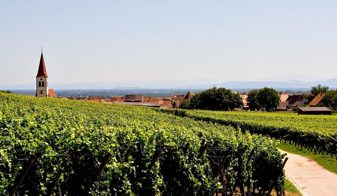 Alsace Wine Route Tours from Strasbourg