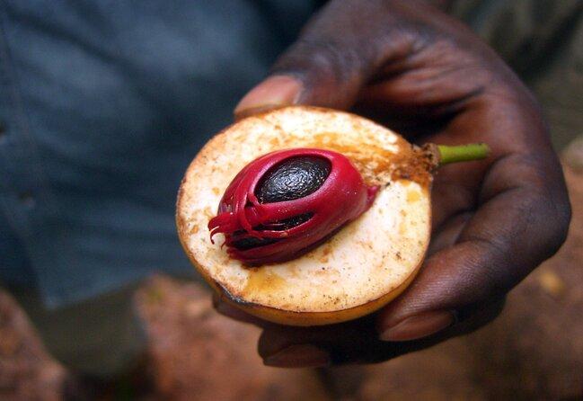 Spice Island History in Zanzibar