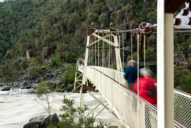 Top Hiking Trails in Cradle Mountain National Park