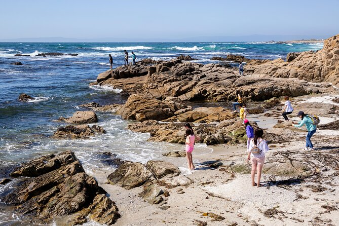 Monterey and Carmel Day Trips from San Francisco
