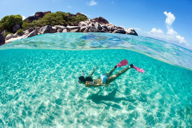 Top Snorkeling and Scuba Diving Spots in St. Maarten