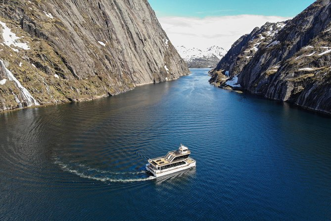 Silent Trollfjord Cruise