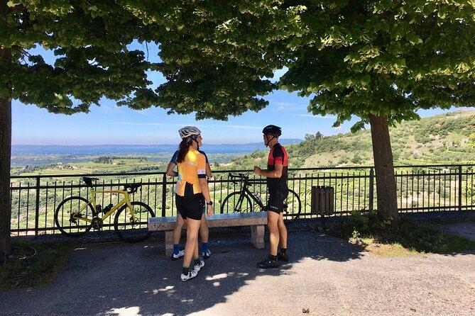 Racing Bike Tour Lake Garda to Valpolicella and Verona