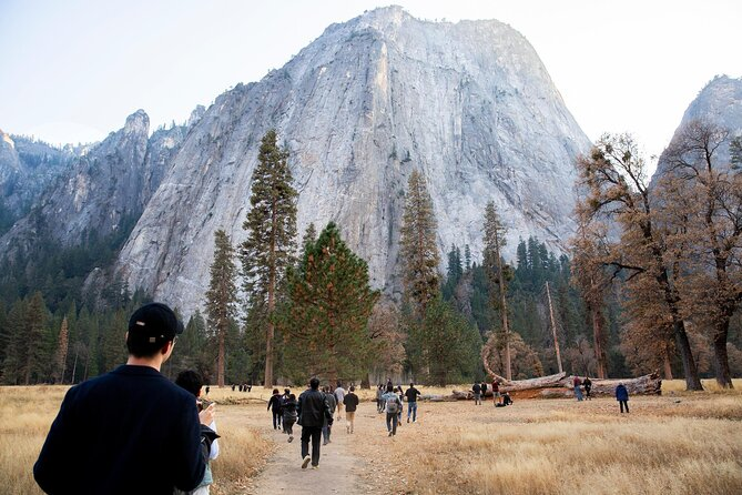 How to Spend 1 Day in Yosemite National Park