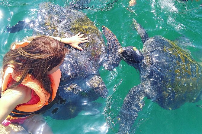 FANTASTIC Akumal Tour Swimming with Turtles and 2 Cenotes and a Cavern