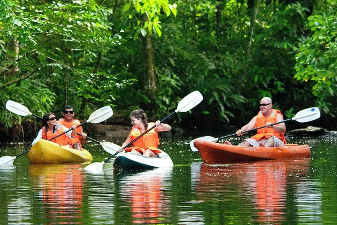 Kayak Tour in Tortuguero National Park(Ticket included)