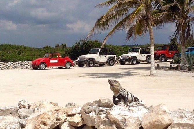 Cozumel by Jeep to the Fullest