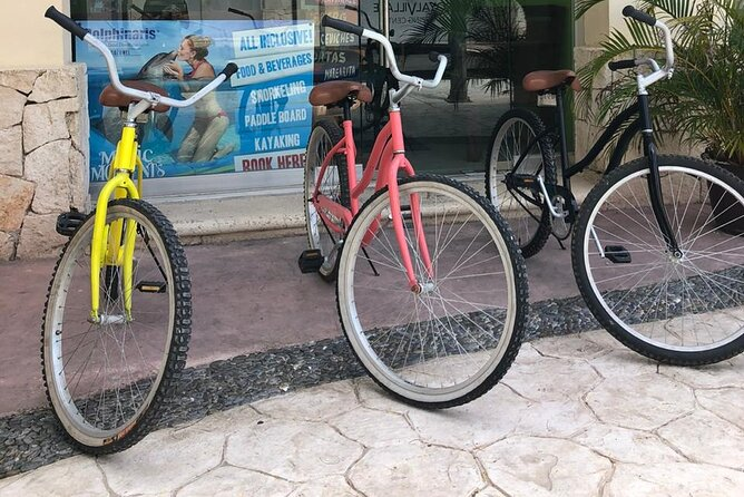 Bicycle Rental for 24 Hours