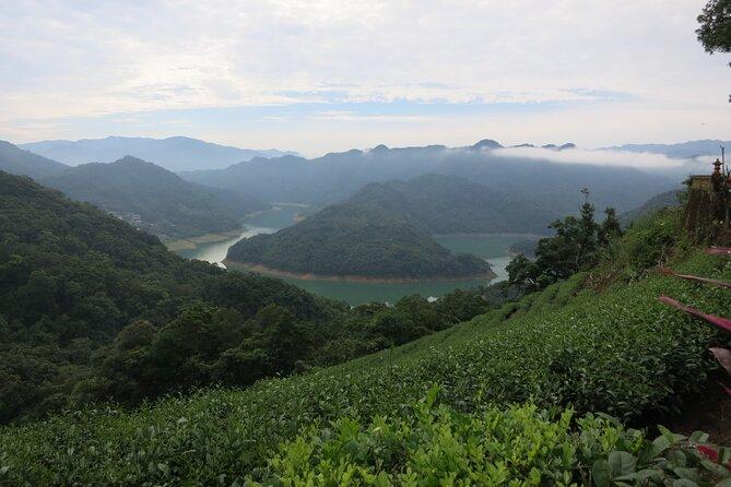 1-Day Pinglin & Elephant Mountain Tour from Taipei