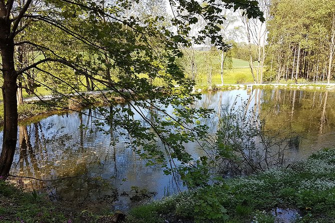 Trout fishing in the Waldviertel: your own fishing pond