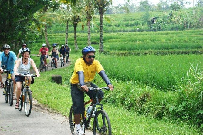 Bali Countryside Cycling Activity