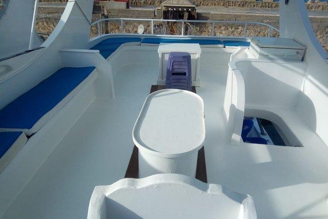 Princess Boat trip Expectations VS Reality