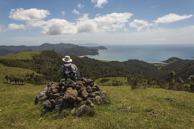 Coromandel Peninsula Tours from Auckland
